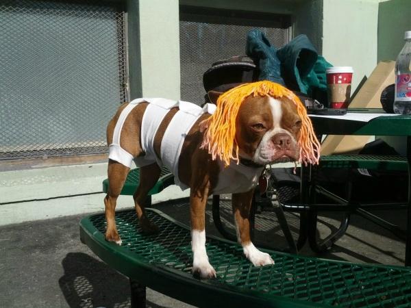 Leeloo-Costume