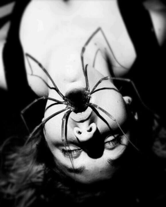 spider-mouth.jpg